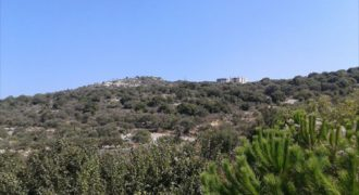 Land for Sale Gharzou Jbeil Area 7200Sqm