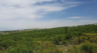 Land for Sale Ehmej Jbeil Area 897Sqm