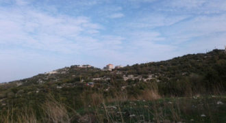 Land for Sale Gharzouz Jbeil Area 5030Sqm