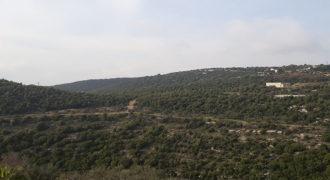 Land for Sale Bejjeh Jbeil Area 1640Sqm