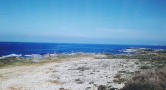 Land for Sale Berbara Jbeil Area 6916Sqm