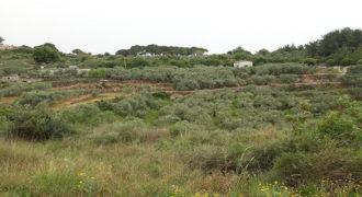 Land for Sale Mrah Chdid Batroun Area 676Sqm