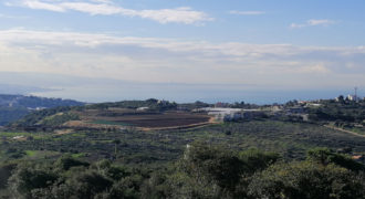 Land for Sale Gharzouz Jbeil Area 1567Sqm