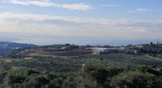 Land for Sale Gharzouz Jbeil Area 1601Sqm