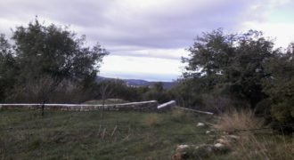 Land for Sale Aannaya – Kfar Baal Area 860Sqm
