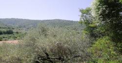 Land for Sale Ain Kfaa Jbeil Area 1082Sqm