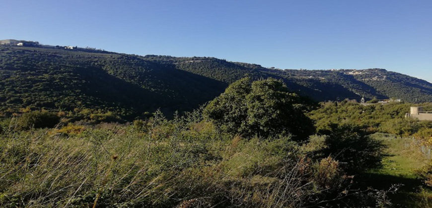 Land for Sale Ain Kfaa Jbeil Area 1225Sqm