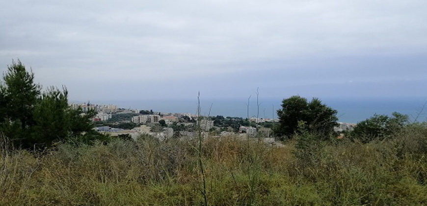 Land for Sale Blat Jbeil Area 840Sqm