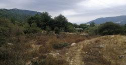 Land for Sale Zebdine Jbeil Area 1100Sqm