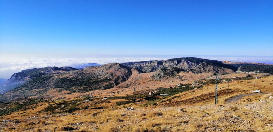 Land for Sale Tannourine – Faouqa – ( Msateb -Ain Et Tillaje ) Area 2450Sqm.